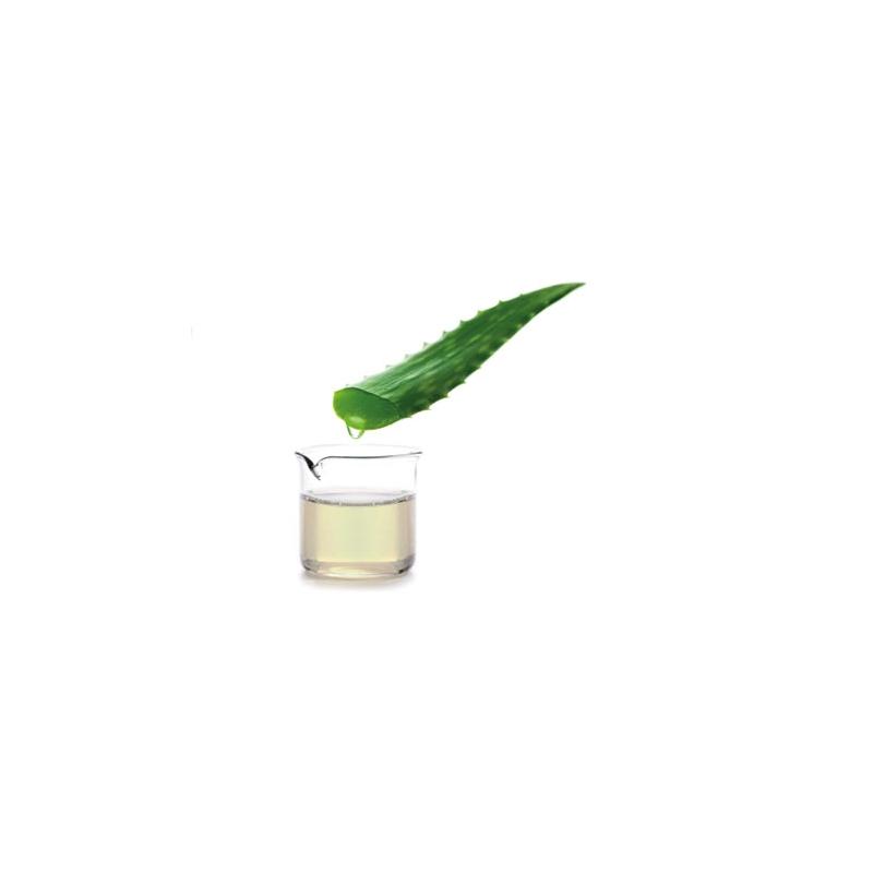 Slide-BDC--Aloe-2.jpg